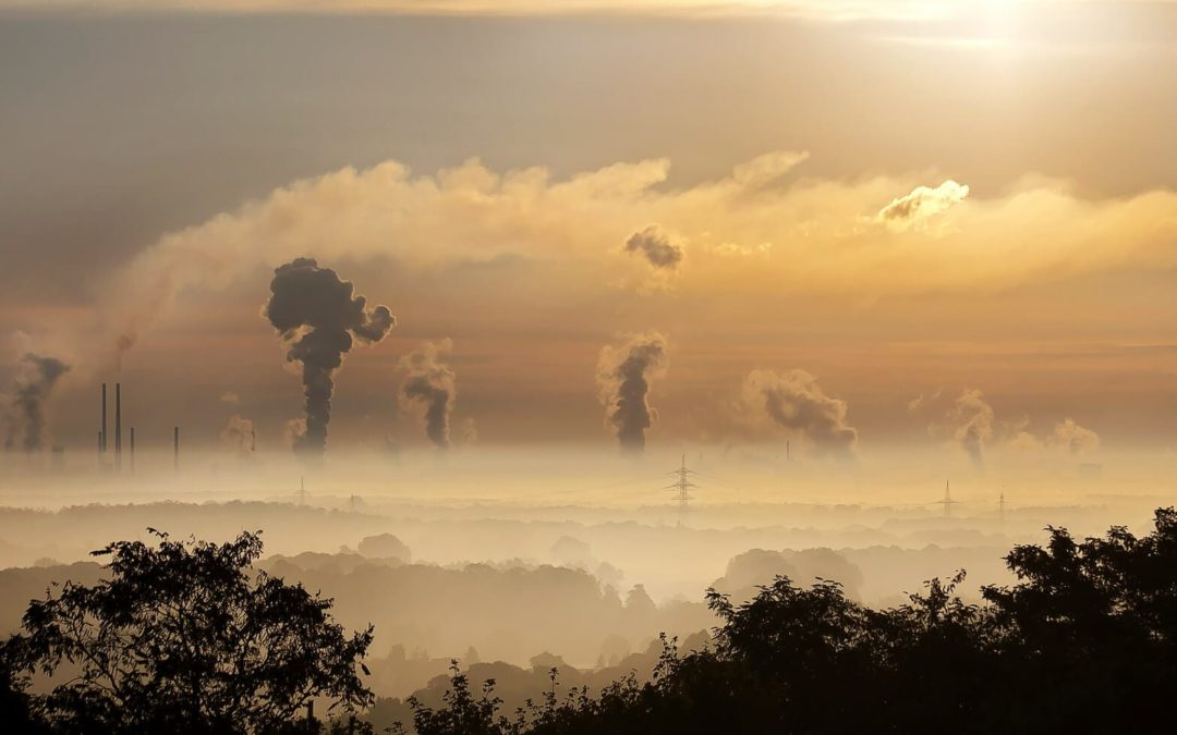 Carbon Pricing 101